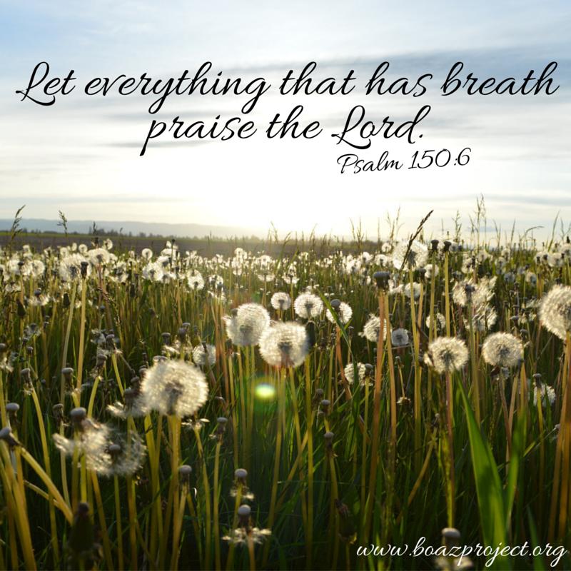 psalm 150_6