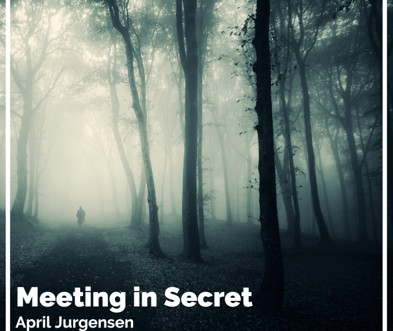 Meeting in Secret